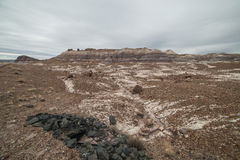 Badland Formations, Petrified Wood, and Bentonite Clay Near Blue Mesa Trail in Petrified Forest National Park, Arizona. Petrified Forest National Park is a Royalty Free Stock Photos