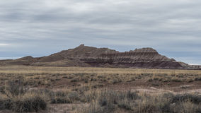 Badland Formations, Petrified Wood, and Bentonite Clay Near Blue Mesa Trail in Petrified Forest National Park, Arizona. Petrified Forest National Park is a Stock Photography