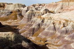 Badland landscape,. Petrified forest, New mexico Stock Photo