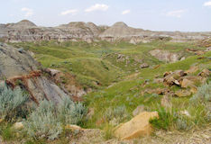 Badland terrain in alberta. The badland terrain at provincial dinosaur park (many dinosaur fossils have been found in this area), alberta, canada Royalty Free Stock Photography