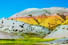 Badlands που ανθίζει με το χρώμα Στοκ Φωτογραφία