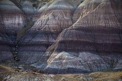 Badlands στην ανατολή στο χρωματισμένο εθνικό πάρκο ερήμων κοντά σε Holbroo στοκ εικόνα