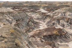 Badlands του επαρχιακού πάρκου αβ Καναδάς δεινοσαύρων Στοκ Φωτογραφίες