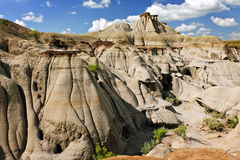 Badlands in Alberta, Canada royalty free stock photos