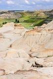 Badlands in Alberta, Canada Stock Image