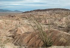 The Badlands in Anza Borrego State Park. Overlooking the canyons in the Anza Borrego badlands in southern California stock image