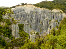 Badlands hoodoos of Putangirua Pinnacles, NZ. Badland erosion of soft conglomerate sediment formations called Putangirua Pinnacles in the Aorangi Ranges, North Stock Image