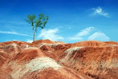 Badlands in ontario canada Stock Photography