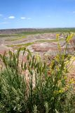 badlands park narodowy sd Zdjęcie Royalty Free