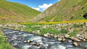 Badlands, Rock, Geological Phenomenon, Geology stock photo
