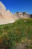 Badlands and sunflowers Stock Photo