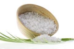 badleafen gömma i handflatan salt Fotografering för Bildbyråer