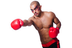 Badly beaten boxer Stock Photography