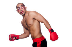 Badly beaten boxer. Isolated on white royalty free stock image