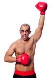 Badly beaten boxer Royalty Free Stock Image