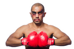 Badly beaten boxer Stock Images