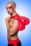 Badly beaten boxer isolated Royalty Free Stock Photography