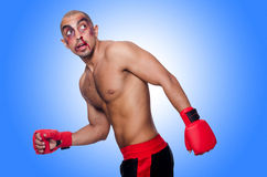 Badly beaten boxer isolated Royalty Free Stock Photo