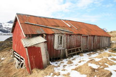 Badly Repaired Lofoten's barn Royalty Free Stock Images