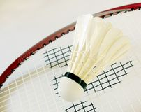 Badminton 1 stock photography