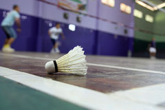 Free Badminton Royalty Free Stock Images - 10605349