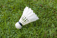 Badminton. A badminton on the grass Stock Photos