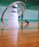 Badminton 2. Perspective in a sports hall with shuttlecocks and badminton racket Stock Photography