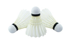 Badminton. Stock Images