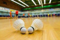 Badminton Royaltyfria Foton