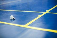 Badminton Imagem de Stock Royalty Free