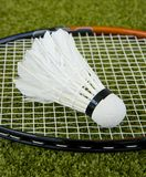 Badminton Stock Photo