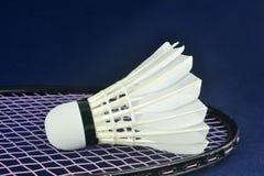 Badminton. Royaltyfri Foto