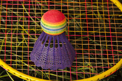 Badminton. Shuttlecock and racket on green grass Stock Images