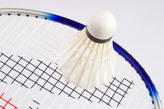 Free Badminton Stock Photography - 6227872