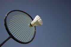 Free Badminton Action Royalty Free Stock Photo - 6297595