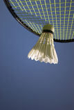 Badminton Action Royalty Free Stock Photo