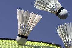 Badminton Action Stock Image