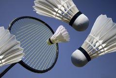 Badminton action royalty free stock photo