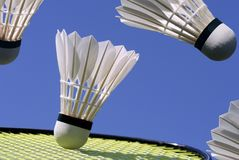 Badminton action all over Royalty Free Stock Images