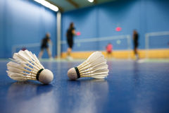 Badminton - badminton courts with players competing Royalty Free Stock Photos