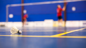 Badminton - badminton courts with two shuttlecocks Royalty Free Stock Photos