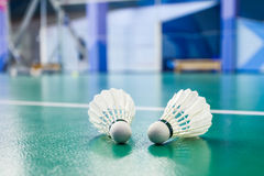 Badminton balls Royalty Free Stock Image