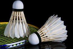 Badminton and battledore Stock Photos