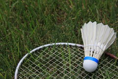 Badminton Birdie Shuttlecock Racket On Green Grass. A badminton birdie, or shuttlecock, and racket lying on the green grass Stock Images