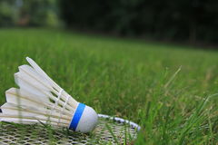 Badminton Birdie Shuttlecock Racket On Green Grass. A badminton birdie, or shuttlecock, and racket lying on the green grass Royalty Free Stock Photography