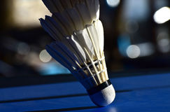 Badminton Cork Body Parts Background Photograph Photos stock