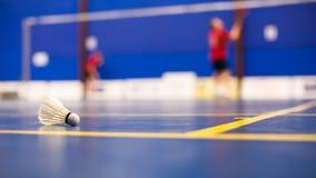 Badminton - cortes de badminton com duas petecas Fotos de Stock Royalty Free