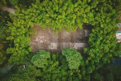 Badminton court. In the forest stock image
