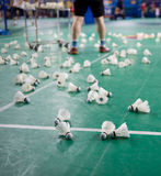 Badminton courts Stock Photo