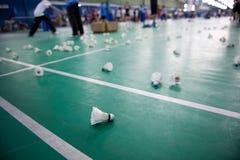 Badminton Stock Images